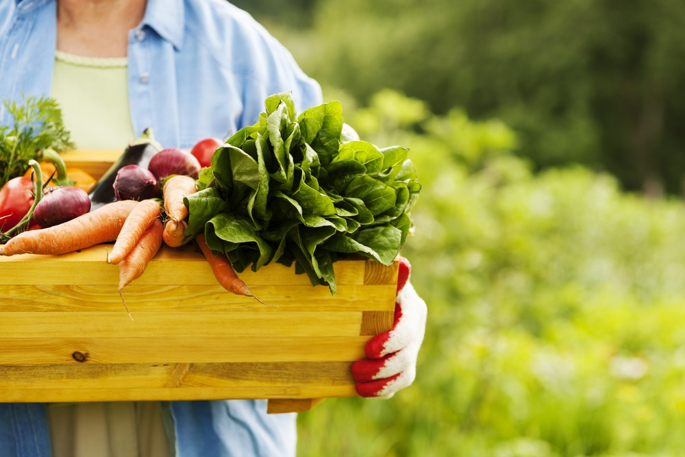 Organic Food is better