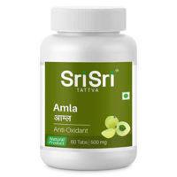 Sri Sri Ayurveda Amla Tablet 500 MG